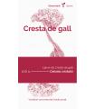 Cresta de gall (Celosia cristata)