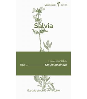 Sàlvia (Salvia officinalis)