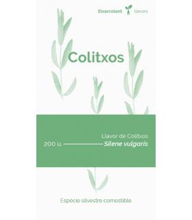 Colitxos (Silene vulgaris)
