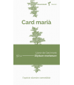 Card marià (Silybum marianum)