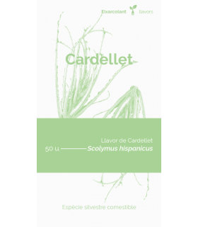 Cardellet (Scolymus...